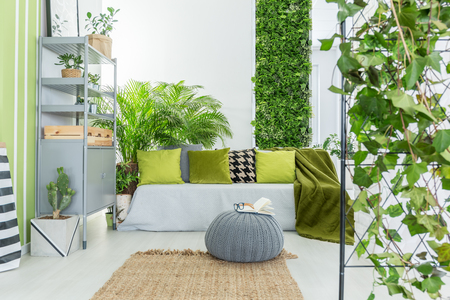 Make Your Apartment More Energy Efficient